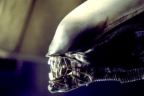 Alien TV Series in the Works at FX Networks, From Fargo EP Noah Hawley