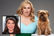 Rebel Wilson Set to Host Pooch Perfect Dog Grooming Competition for ABC; Lisa Vanderpump to Serve as Judge