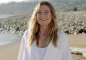 greys anatomy beach returns season 17 review