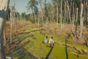 The Underground Railroad Cora and Caesar Swamp