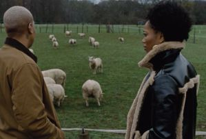 Master of None, Denise, Alicia and the sheep