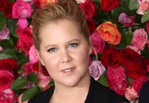 Amy Schumer HBO Max Series