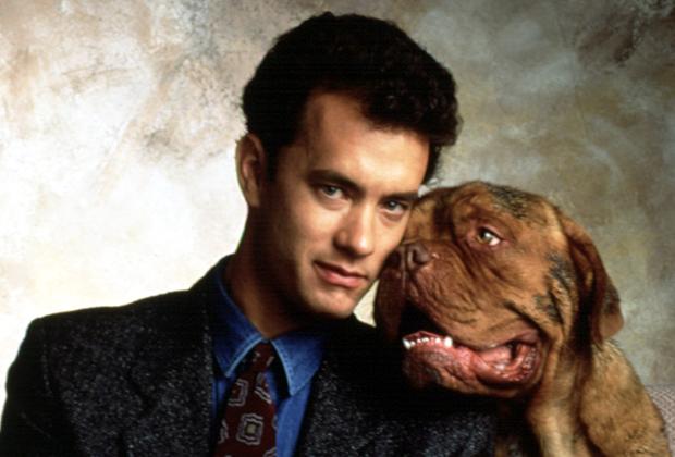 Turner & Hooch: Disney+ Series Kills Off Tom Hanks' Character — Watch Trailer