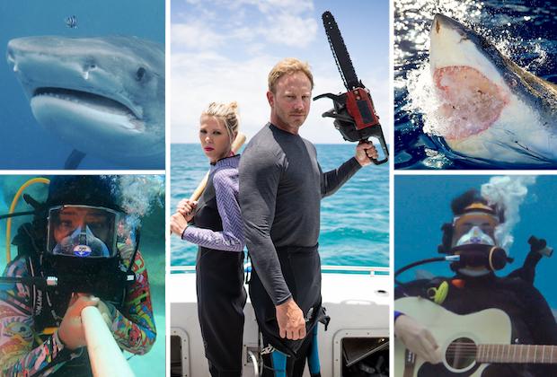 Shark Week 2021