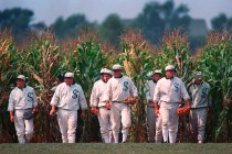 Ratings: Fox's 'Field of Dreams' Coverage Delivers a 16-Year MLB High