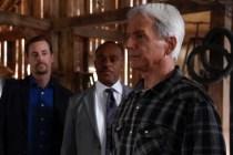 NCIS Recap: Did Gibbs Get His Badge Back? Plus, Grade Gary Cole's Debut